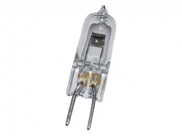Roo-Lite 100w Bulb