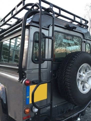 Safety Devices Defender Roll Cage Ladder